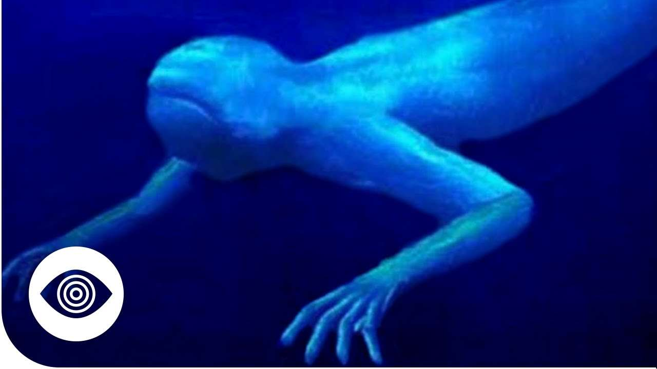 Are Aliens Hiding Under The Sea?
