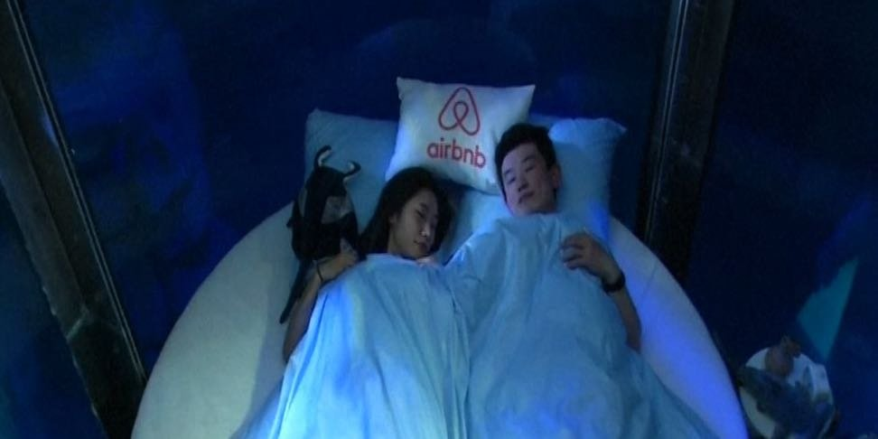 Would you have the guts to sleep in a shark tank? : THE