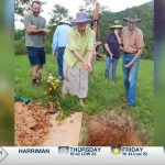 No casket, no cost: Tennesseans go back to 'natural' burial