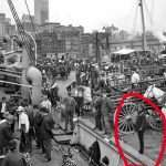 10 Real incidents that prove time travelers exist