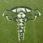 ALIENS MAKE CROP CIRCLES, BEST EVIDENCE EVER