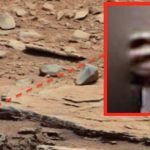 Yahoo reports: NASA Rover Spots Claw Of 'Living Alien' On Mars