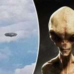 UFOs: Another sighting in Malta?